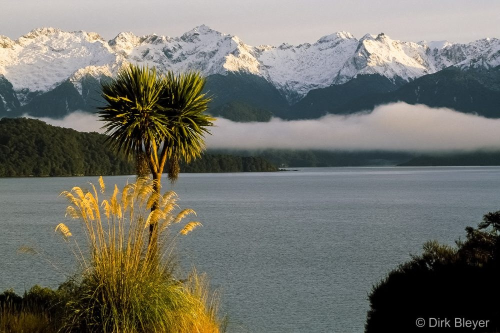 Fernweh360°: Neuseeland – von Aussteigern und Kiwis – VHS präsentiert qualitativ hochwertige Multivisionsshow