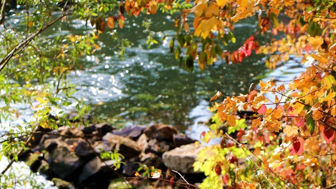 An den Ufern der Lippe