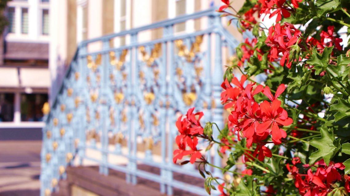 """Lippstadt ist vielfältig – Tag der """"Begegnung der Kulturen"""" am 15. Juni auf dem Rathausplatz"""