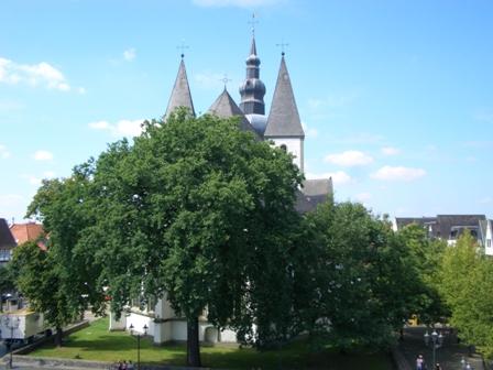 Baumspaziergang in der historischen Altstadt After Work-Stadtführung