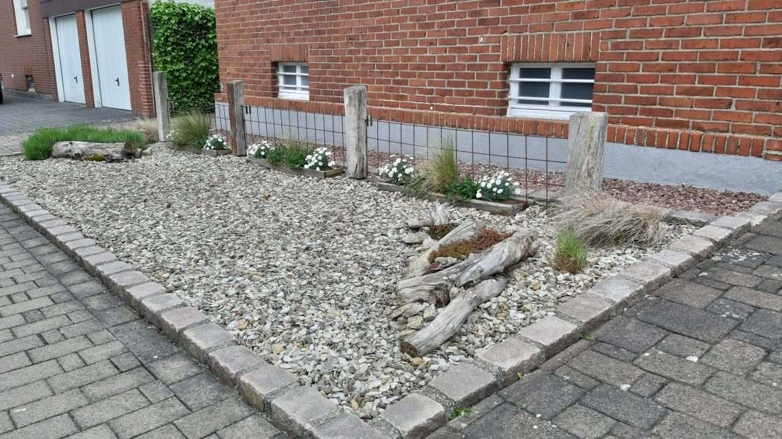vhs online: Vorgartengestaltung